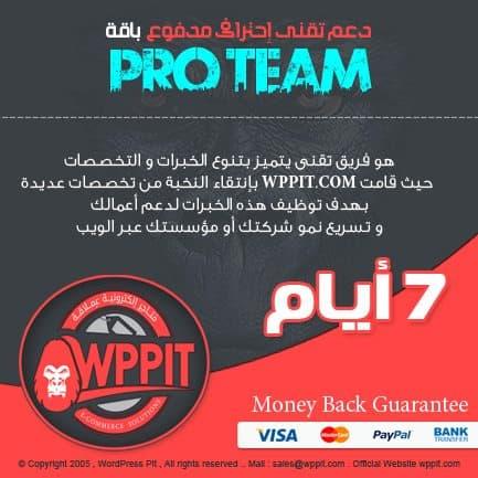 دعم فنى ووردبريس – دعم فنى إحترافى للوردبريس Pro Team