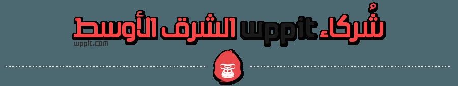 شركاء wppit الشرق الأوسط
