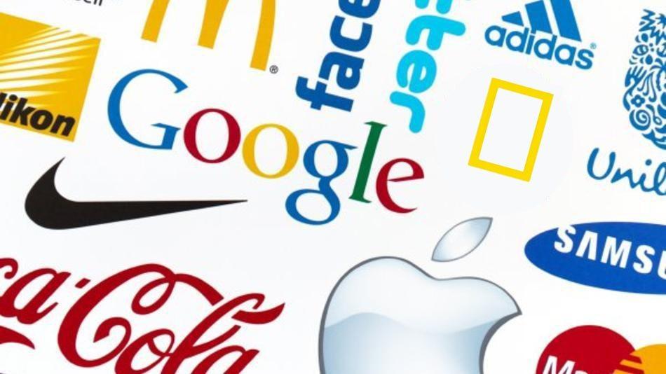 خطوات بناء علامة تجارية مميزة على شبكة الإنترنت