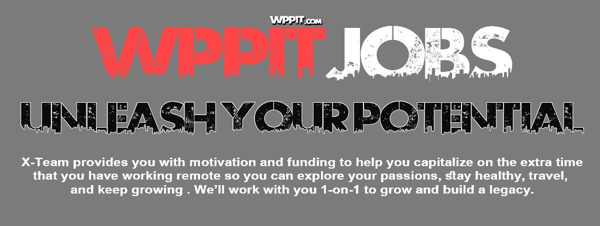 وظائف خالية فى شركة wppit.com