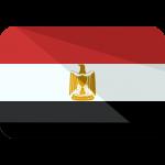 شركاء Wppit فى مصر